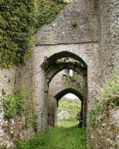 arches in Penrice Estate