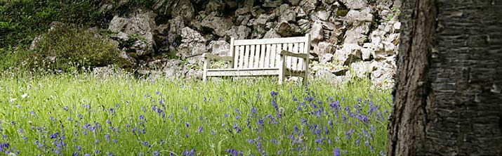 tranquil bench at Penrice